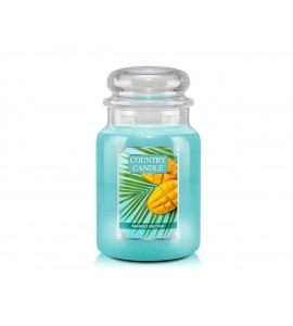 GRANDE JARRE COUNTRY CANDLE MANGO NECTAR